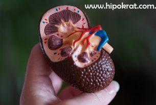 Karcinom bubrega