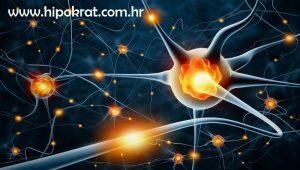 Neuromuskularne bolesti