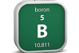 Mineral Bor